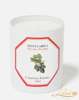 Luxury aromatic candle Carrière Frères Fig